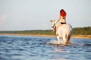 Woman swimming with horse