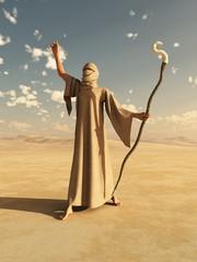 Nomadic Desert Sorcerer