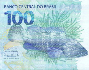100 reais banknote from brazil