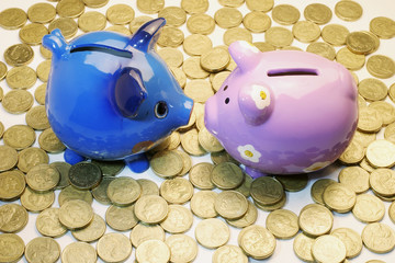 Piggy Banks and Coins