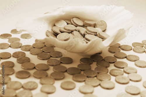 Coins on Seashell