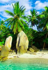 Paradise Season Stones