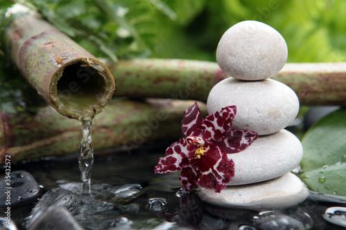Orchidée noire et galets blanc