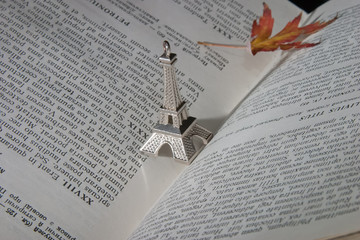 Book with leaf and eifel sculpture
