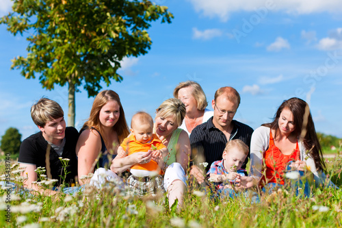 Family and multi-generation - fun on meadow in summer