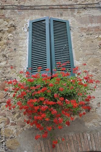 Finestra con vaso di fiori di maurocchio foto stock for Finestra con fiori disegno