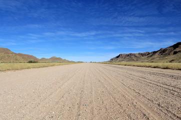 Grassy Savannah with mountains in background, Namib desert road