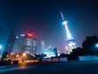 shanghi skyline at night