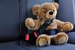 Sicherheit für Teddys