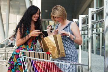 Two young women with shopping cart