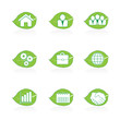 Eco green leaf business icon set