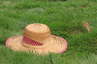 beautiful straw hat