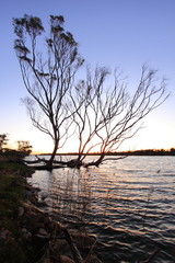 Sunset on a Billabong