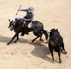 corrida a cheval