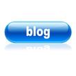 Boton alargado brillante texto blog