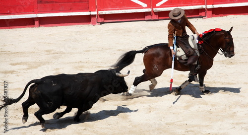 Fotobehang Stierenvechten corridan