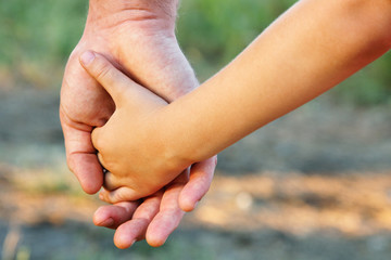 family father and child son hands nature outdoor