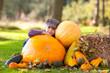 girl with pumpkin outdoor autumn