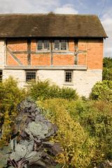 Kitchen Garden, Mary Arden's House