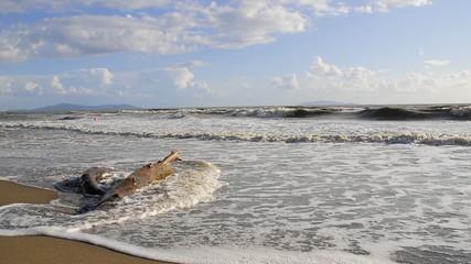 onde sulla spiaggia di Alberese - Toscana