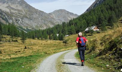 Bergwandern im Lungau