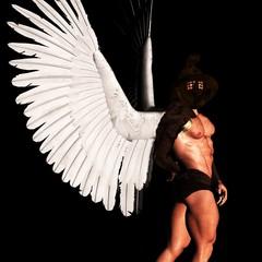 angel 194