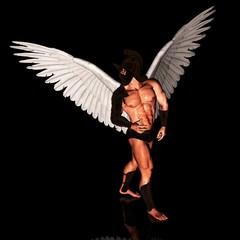 angel 191