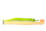 Green hot pepper with measuring tape isolated on white