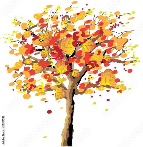 Foto op Canvas Bloemen vrouw Autumn tree
