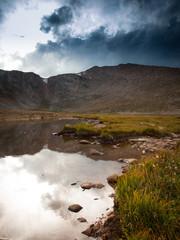 Alpine Summer in the Rockies