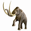 Постер, плакат: Columbian Mammoth 01