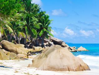 Seascape Exotic Stones