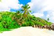 Shore Dream Bay