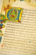 Gutenburg Bible detail