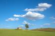 blue sky, white clouds, green grass of a sicilian landscape