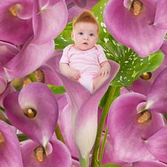 Bambina nel tulipano