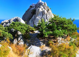 South part of Crimea peninsula, beach   landscape.