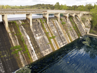 dam old left with many vegetation