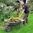 Senior bei der Gartenarbeit im Herbst