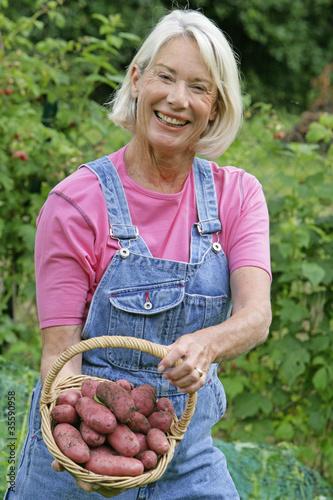 Potager - Récolte de pommes de terre