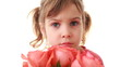 Little girl sniffs and touches beautiful pink rose in hand