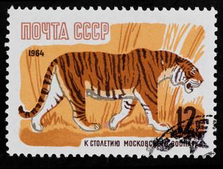 Postal stamp. Tiger, 1964