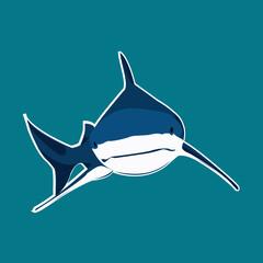 requin peau bleu