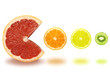 grapefruit with orange, lemon and kiwi