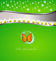 Green card or background with water drops