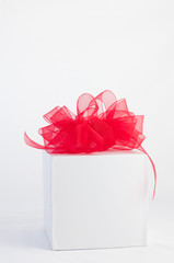 Holiday gift box with delicate red gossamer  bow.