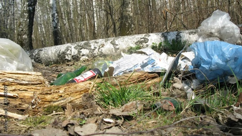 Panorama of trash in forest, time lapse