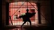 woman performs modern dance with cloth near lattice gate