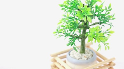 Artificial plant in flowerpot circled by wooden lattice rotates
