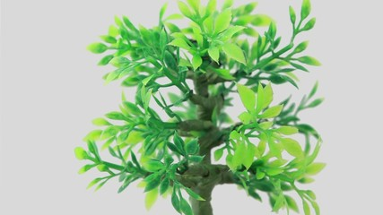 Artificial ornamental plant rotates counterclockwise